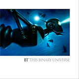 This Binary Universe